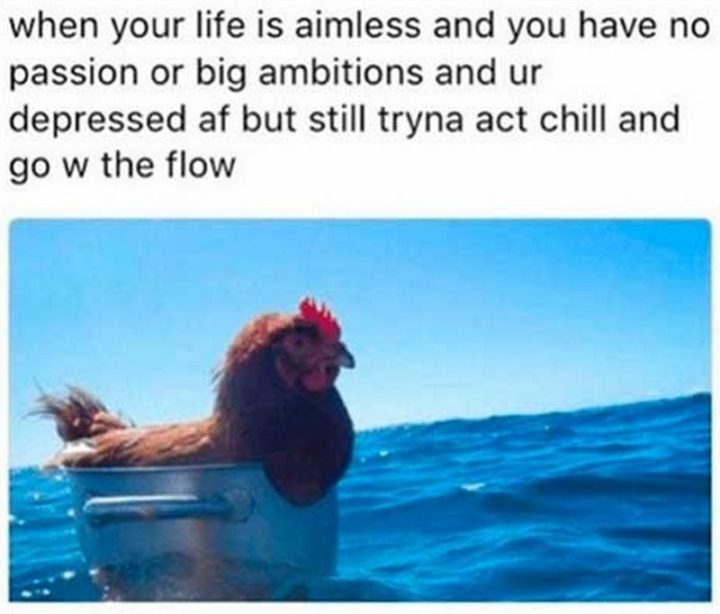 "61 Depression Memes - ""When your life is aimless and you have no passion or big ambitions and ur depressed AF but still tryna act chill and go w the flow."""