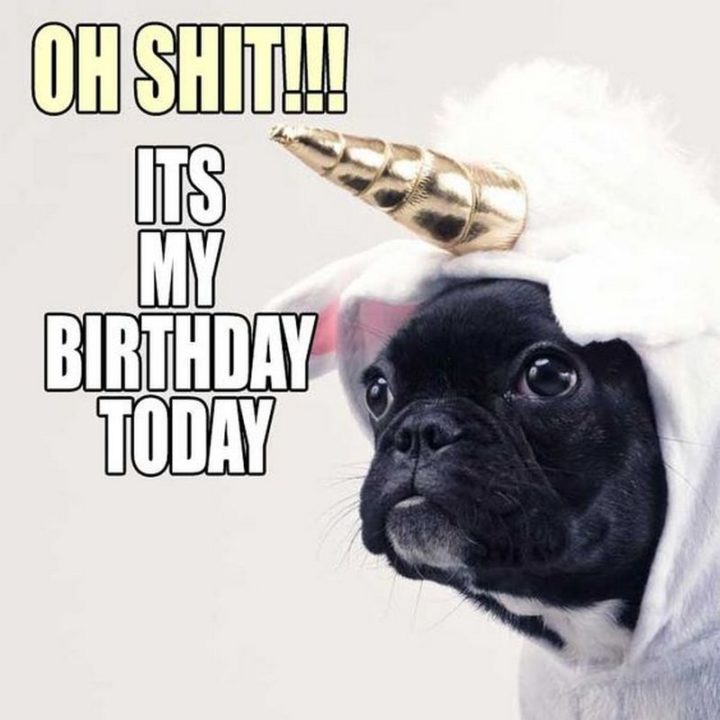 "101 It's My Birthday Memes - ""Oh shit!!! It's my birthday today."""