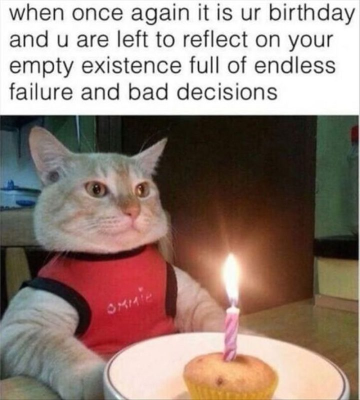 "101 It's My Birthday Memes - ""When once again it is ur birthday and u are left to reflect on your empty existence full of endless failure and bad decisions."""