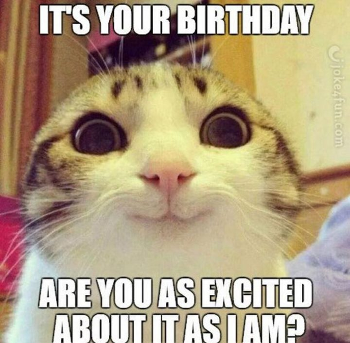 "101 It's My Birthday Memes - ""It's your birthday. Are you as excited about it as I am?"""
