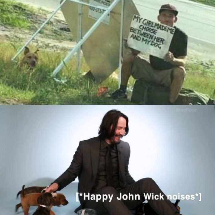 "57 Keanu Reeves Memes - ""My girl made me choose between her and my dog. [*Happy John Wick noises*]."""