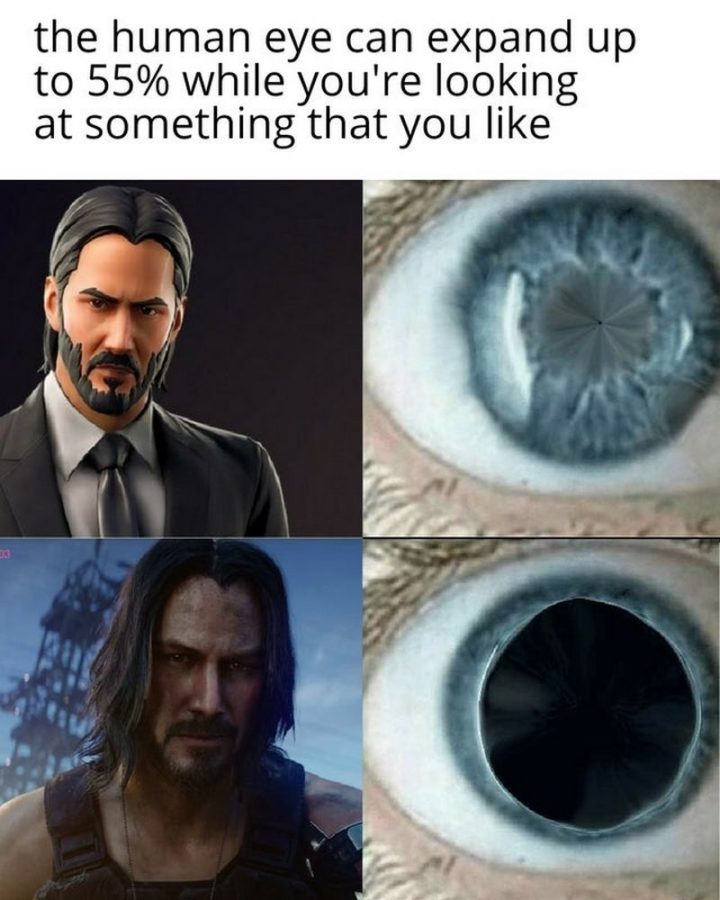 "57 Keanu Reeves Memes - ""The human eye can expand up to 55% while you're looking at something that you like."""