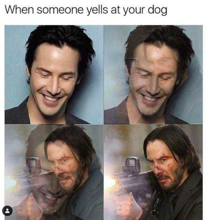 "57 Keanu Reeves Memes - ""When someone yells at your dog."""