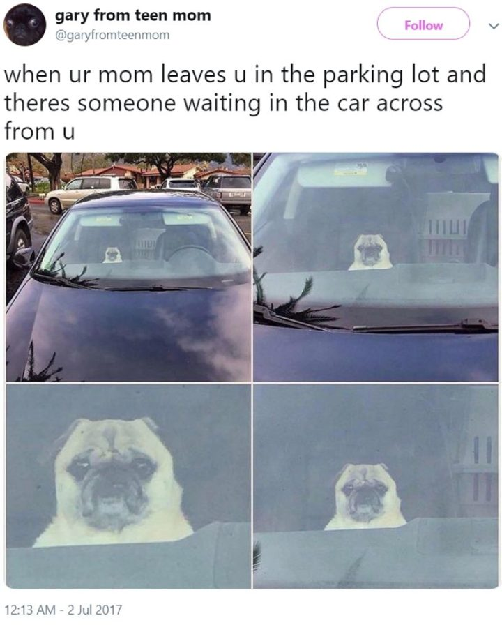 "101 Cute Pug Memes - ""When ur mom leaves u in the parking lot and there's someone waiting in the car across from u."""