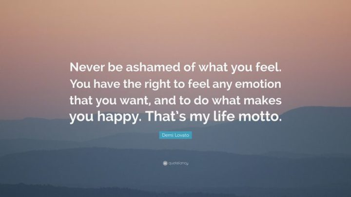 """10 Demi Lovato Quotes - """"Never be ashamed of what you feel. You have the right to feel any emotion that you want, and to do what makes you happy. That's my life motto."""""""