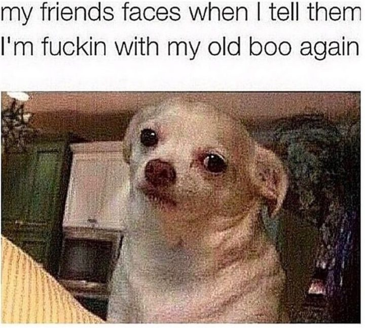 "65 Funny Friend Memes - ""My friend's faces when I tell them I'm f***in' with my old boo again."""