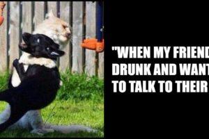 65 Best Funny Friend Memes.