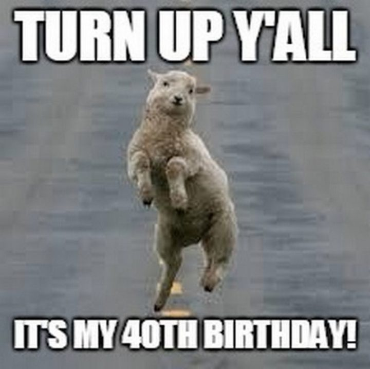 "101 Happy 40th Birthday Memes - ""Turn up y'all. It's my 40th birthday!"""