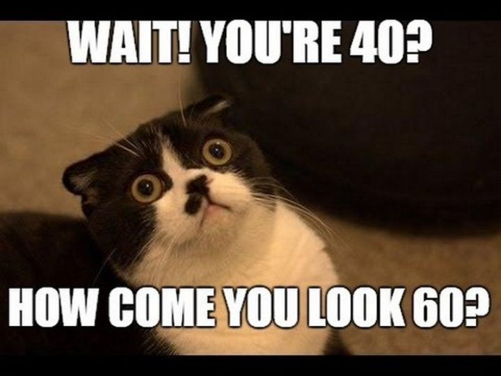 "101 Happy 40th Birthday Memes - ""Wait! You're 40? How come you look 60?"""