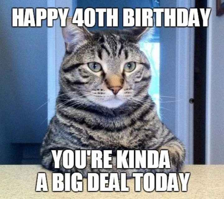 "101 Happy 40th Birthday Memes - ""Happy 40th birthday. You're kinda a big deal today."""
