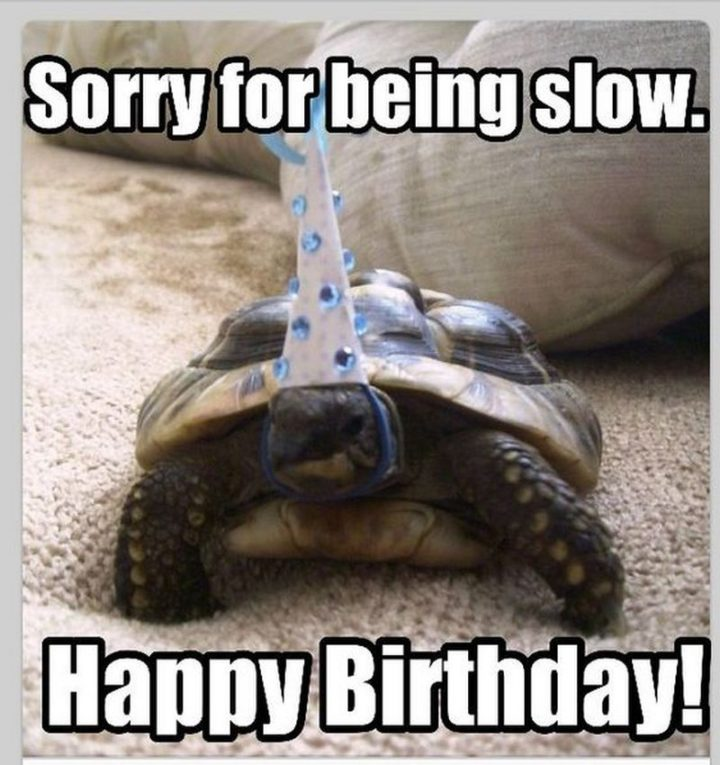 "85 Happy Belated Birthday Memes - ""Sorry for being slow. Happy Birthday!"""