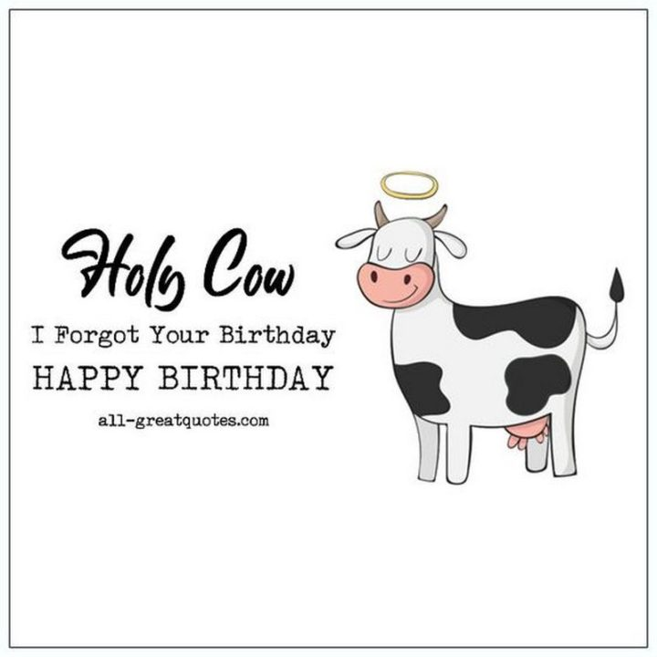 "85 Happy Belated Birthday Memes - ""Holy cow, I forgot your birthday. Happy Birthday."""
