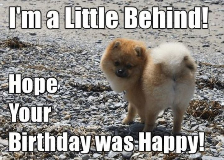 "85 Happy Belated Birthday Memes - ""I'm a little behind! Hope your birthday was happy!"""
