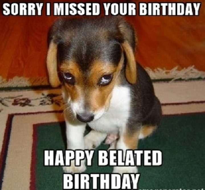 "85 Happy Belated Birthday Memes - ""Sorry I missed your birthday. Happy belated birthday meme."""