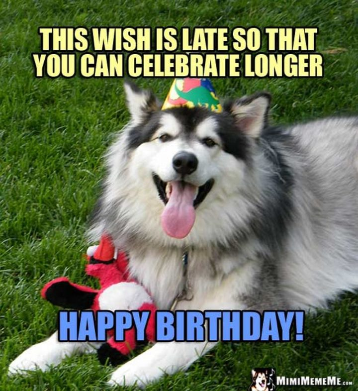"85 Happy Belated Birthday Memes - ""This wish is late so that you can celebrate longer. Happy birthday!"""