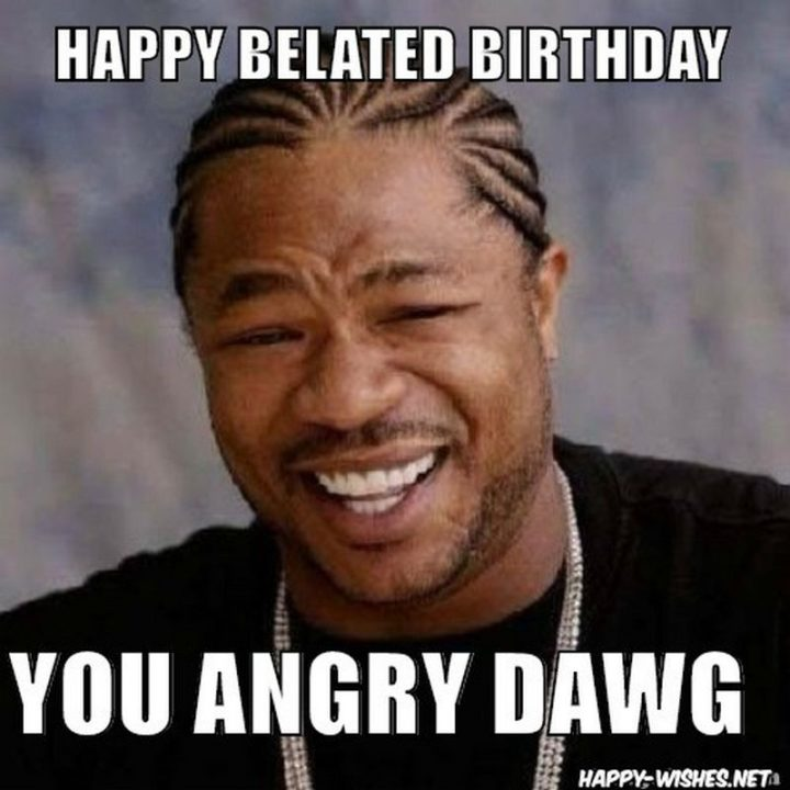 "85 Happy Belated Birthday Memes - ""Happy belated birthday you angry dawg."""