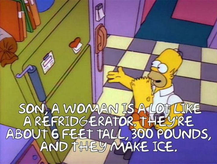 "27 Homer Simpson Quotes - ""Son, a woman is a lot like a refrigerator. They're about 6 feet tall, 300 pounds, and they make ice."""