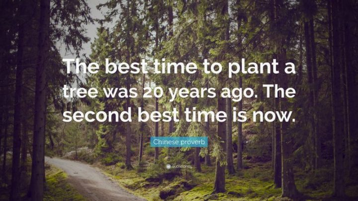 "41 Incredibly Powerful Quotes - ""The best time to plant a tree was 20 years ago. The second best time is now."" - Chinese proverb"