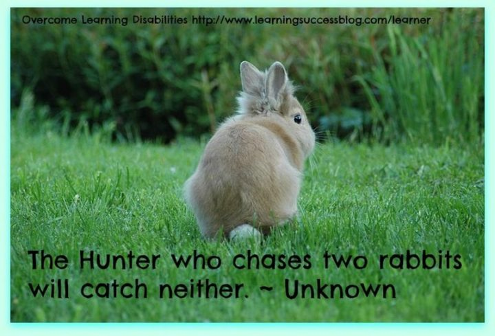 "45 Education Quotes - ""The hunter who chases two rabbits will catch neither."" - Anonymous"