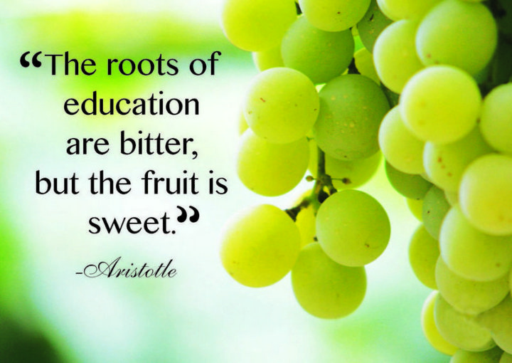 "45 Education Quotes - ""The roots of education are bitter, but the fruit is sweet."" - Aristotle"
