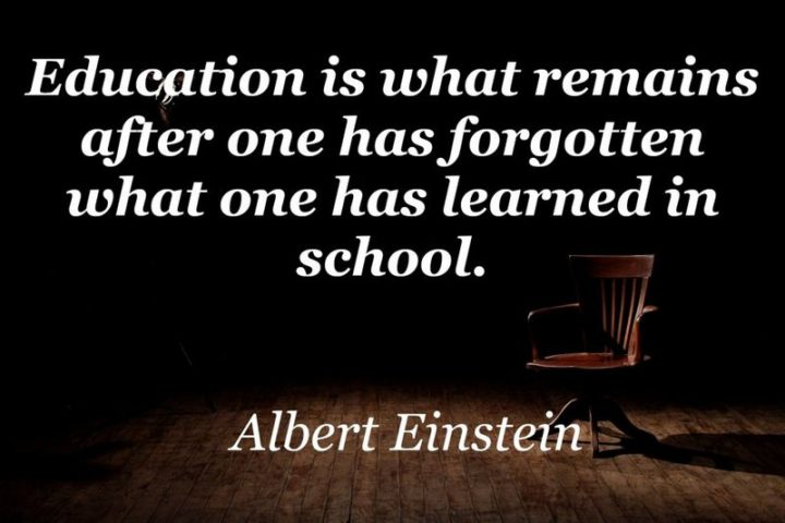 "45 Education Quotes - ""Education is what remains after one has forgotten what one has learned in school."" - Albert Einstein"