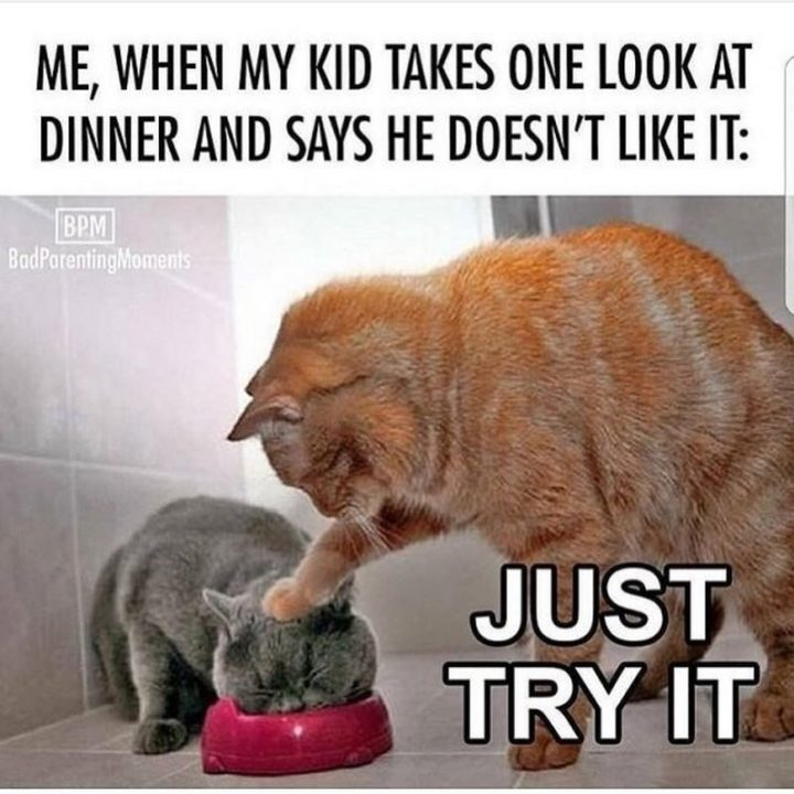 "61 Funny Parenting Memes - ""Me, when my kid takes one look at dinner and says he doesn't like it: Just try it."""