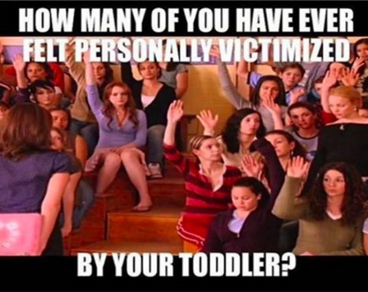 "61 Funny Parenting Memes - ""How many of you have ever felt personally victimized by your toddler?"""