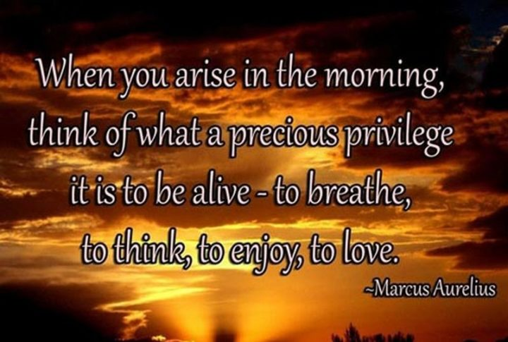 "45 Good Morning Quotes - ""When you arise in the morning, think of what a precious privilege it is to be alive - to breathe, to think, to enjoy, to love."" - Marcus Aurelius"