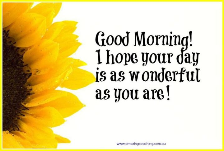 "45 Good Morning Quotes - ""Good morning! I hope your day is as wonderful as you are!"" - Anonymous"