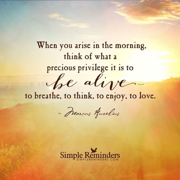 "45 Good Morning Quotes - ""When you arise in the morning, think of what a precious privilege it is to be alive to breathe, to think, to enjoy, to love."" - Anonymous"
