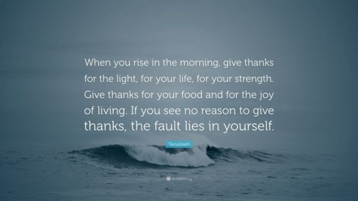 "45 Good Morning Quotes - ""When you rise in the morning, give thanks for the light, for your life, for your strength. Give thanks for your food and for the joy of living. If you see no reason to give thanks, the fault lies in yourself."" - Tecumseh"
