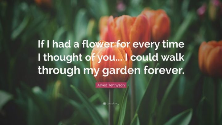 "59 Love Quotes for Her - ""If I had a flower for every time I thought of you...I could walk through my garden forever."" - Anonymous"