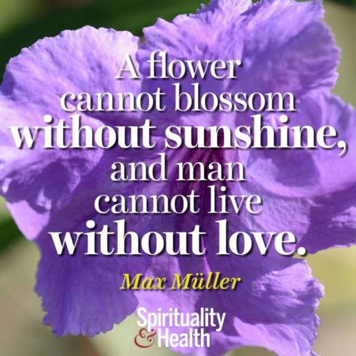 "51 Love Quotes for Him - ""A flower cannot blossom without sunshine, and man cannot live without love."" - Max Muller"