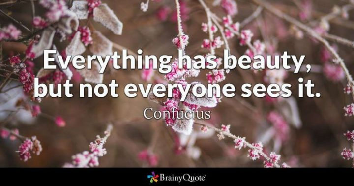 """61 Meaningful Quotes - """"Everything has beauty, but not everyone sees it."""" - Confucious"""