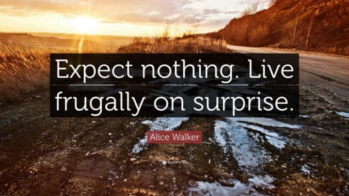 """61 Meaningful Quotes - """"Expect nothing. Live frugally on surprise."""" - Alice Walker"""