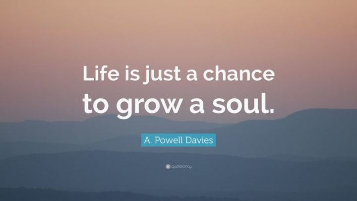 """61 Meaningful Quotes - """"Life is just a chance to grow a soul."""" - A. Powell Davies"""