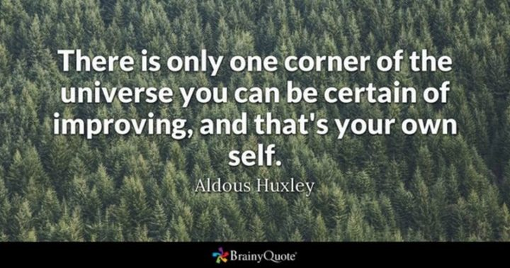 """61 Meaningful Quotes - """"There is only one corner of the universe you can be certain of improving, and that's your own self."""" - Aldous Huxley"""