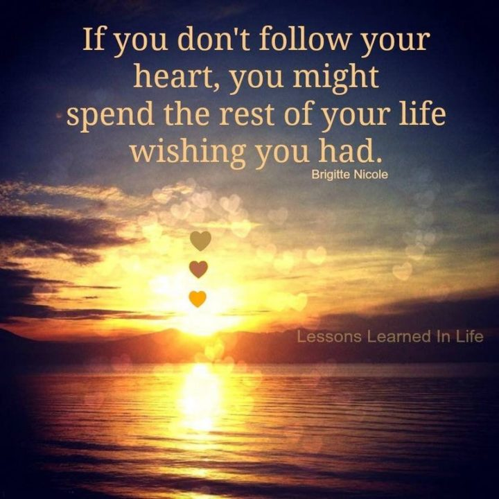 """61 Meaningful Quotes - """"If you don't follow your heart, you might spend the rest of your life wishing you had."""" - Brigitte Nicole"""