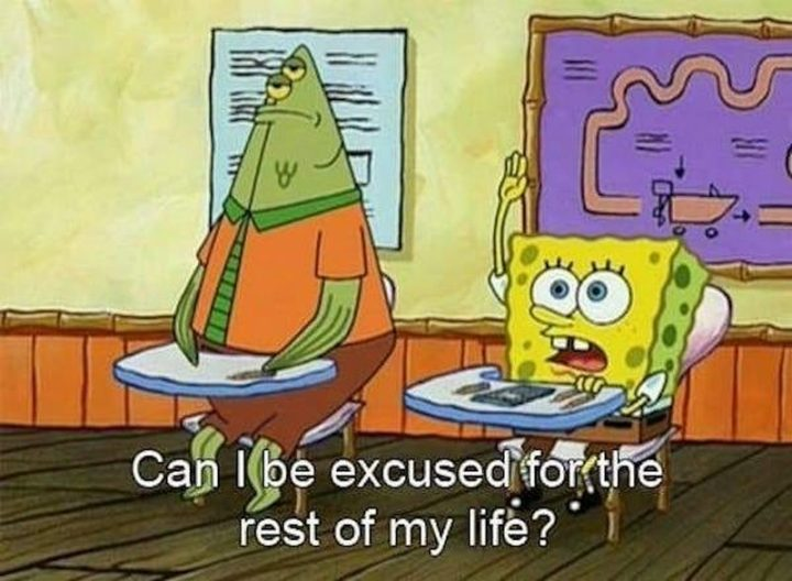 "Funny Spongebob Memes - ""Can I be excused for the rest of my life?"""