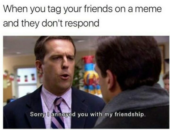 "57 Funny 'the Office' Memes - ""When you tag your friends on a meme and they don't respond: Sorry I annoyed you with my friendship."""
