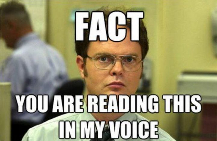 "57 Funny 'the Office' Memes - ""Fact: You are reading this in my voice."""