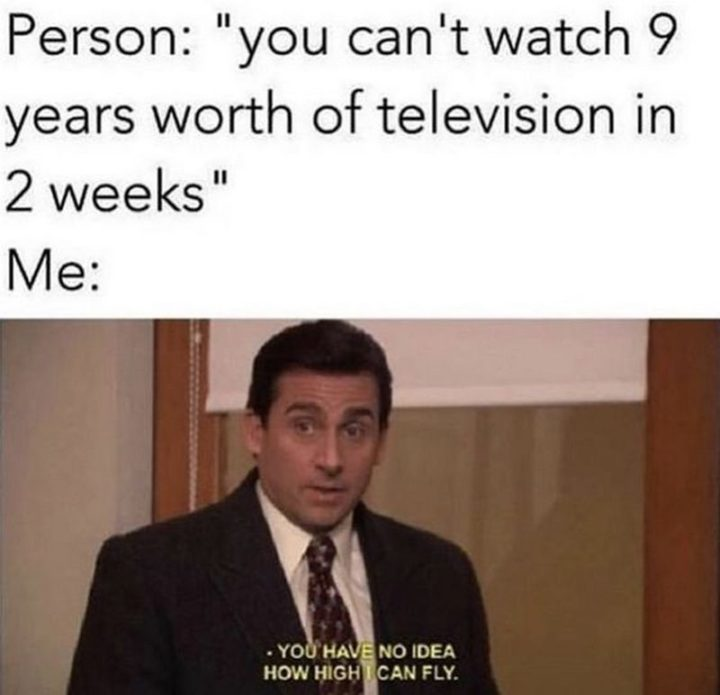 "57 Funny 'the Office' Memes - ""Person: You can't watch 9 years worth of television in 2 weeks. Me: You have no idea how high I can fly."""