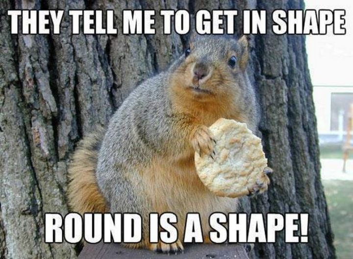 """61 Funny Clean Memes - """"They tell me to get in shape. Round is a shape!"""""""