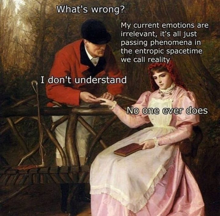 """61 Funny Clean Memes - """"What's wrong? My current emotions are irrelevant, it's all just passing phenomena in the entropic spacetime we call reality. I don't understand. No one ever does."""""""