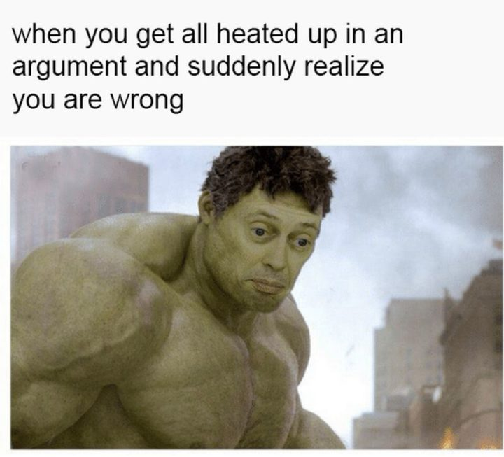 """61 Funny Clean Memes - """"When you get all heated up in an argument and suddenly realize you are wrong."""""""