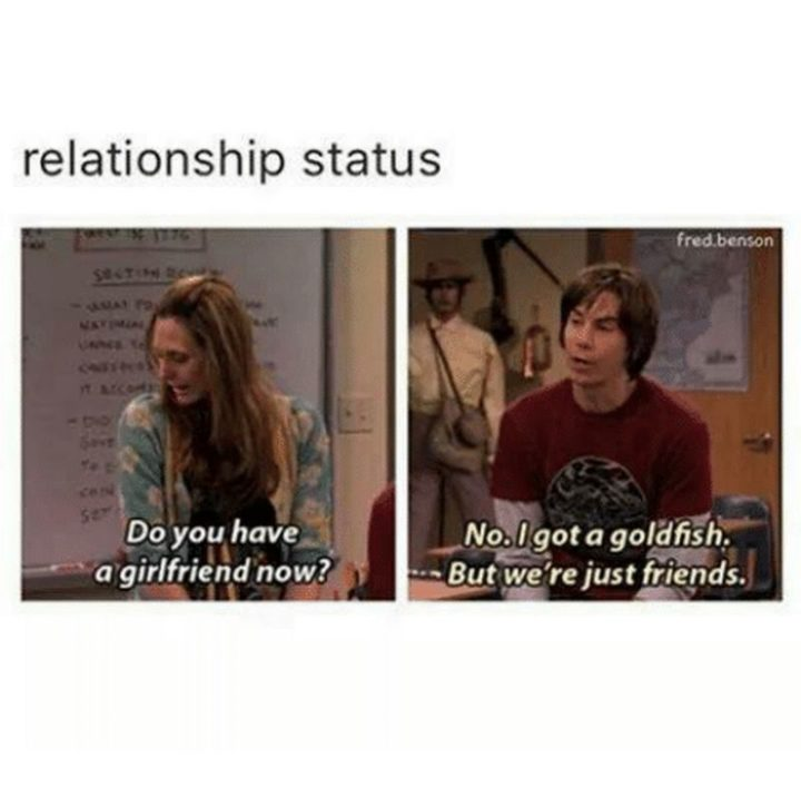"59 Girlfriend Memes - ""Relationship status: Do you have a girlfriend now? No. I got a goldfish. But we're just friends."""