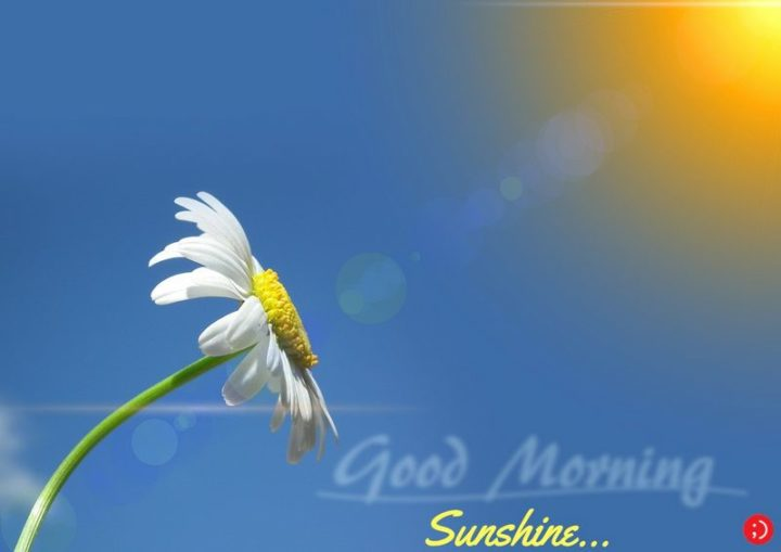 "71 Good Morning Images - ""Good morning sunshine..."""