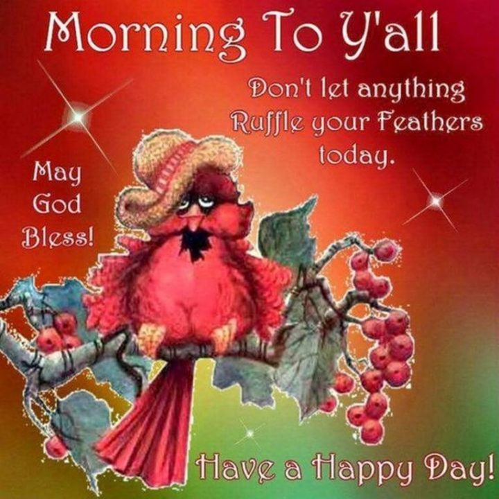 "71 Good Morning Images - ""Morning to y'all. Don't let anything ruffle your feathers today. May God bless! Have a happy day!"""