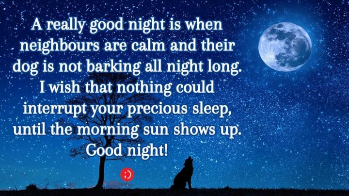 "51 Good Night Images and Quotes - ""A really good night is when neighbours are calm and their dog is not barking all night long. I wish that nothing could interrupt your precious sleep until the morning sun shows up. Goodnight!"