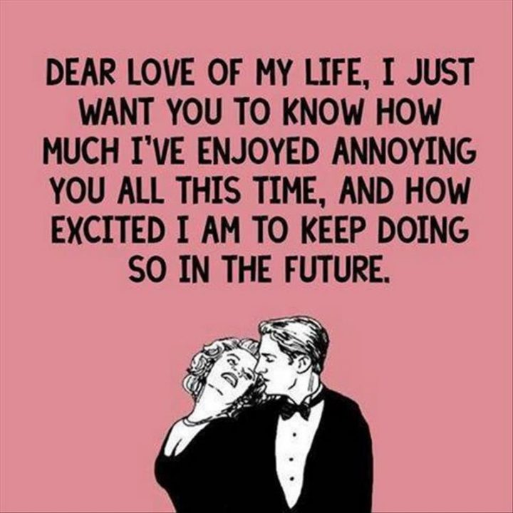 "55 Love Memes - ""Dear love of my life, I just want you to know how much I've enjoyed annoying you all this time, and how excited I am to keep doing so in the future."""